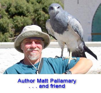 Matt Pallamary