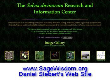 Sage Wisdom Website
