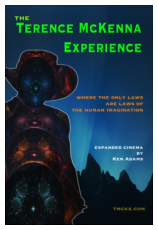The Terence McKenna Experience by Ken Adams