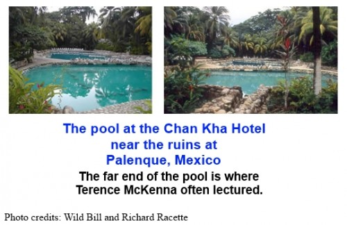 Chan Kha pool in Palenque, Mexico