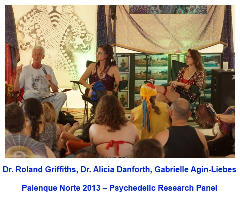Palenque Norte 2013 Psychedelic Research Panel
