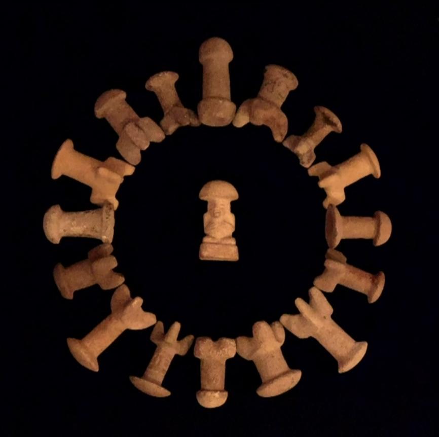 Paul Stamets' Mushroom Stones